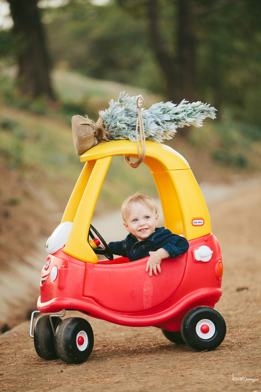 fun family photos yorba linda holiday